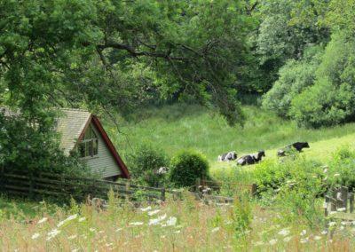 Hut Summer 12