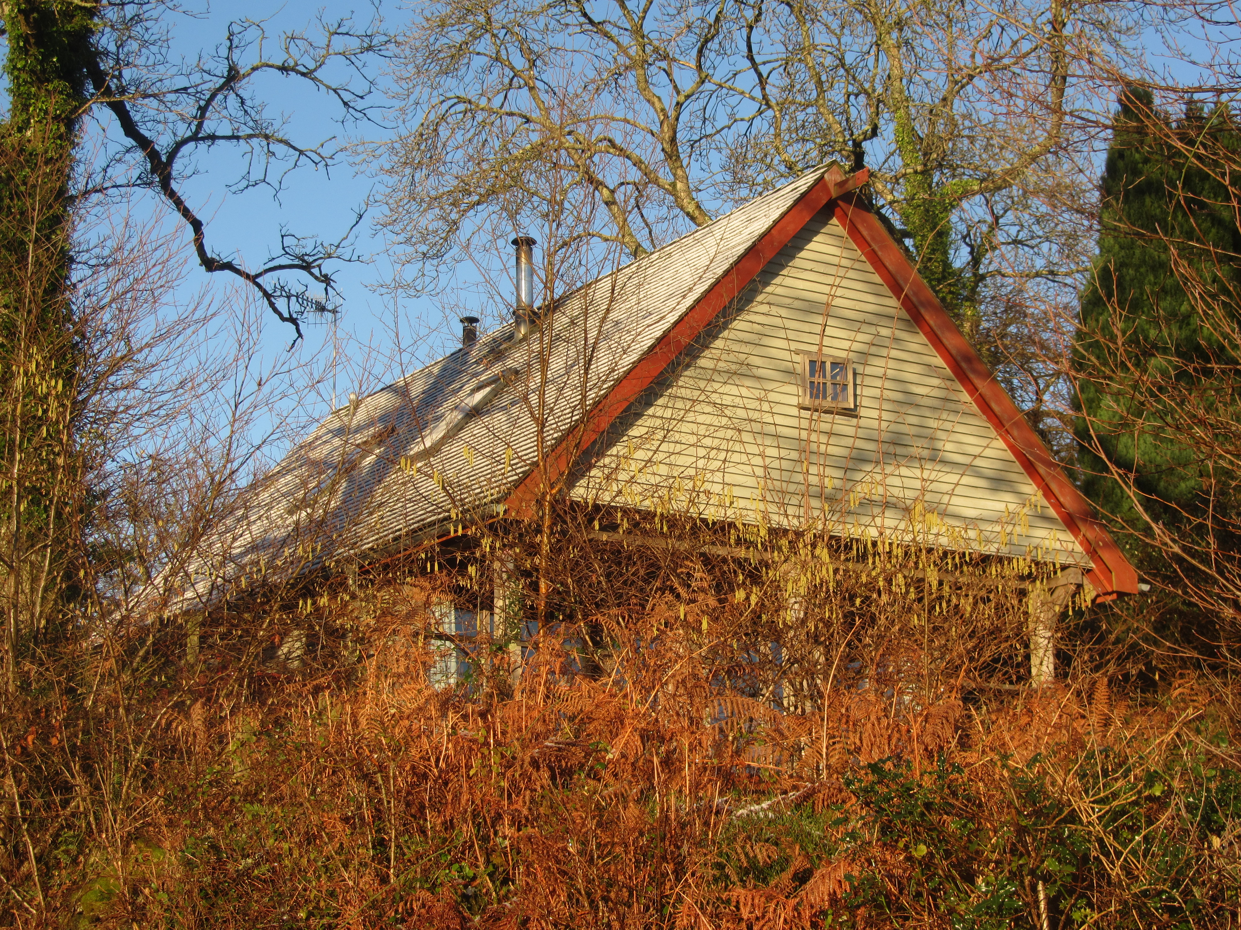 The Hut 1
